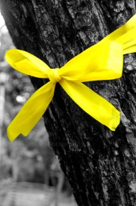 Yellow Ribbon Image